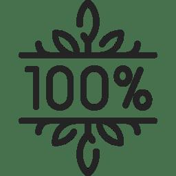 icon 100%
